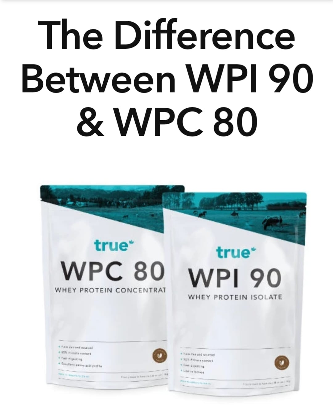 The difference between wpi 90 and wpc 80